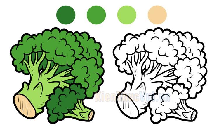 Tranh tô màu rau