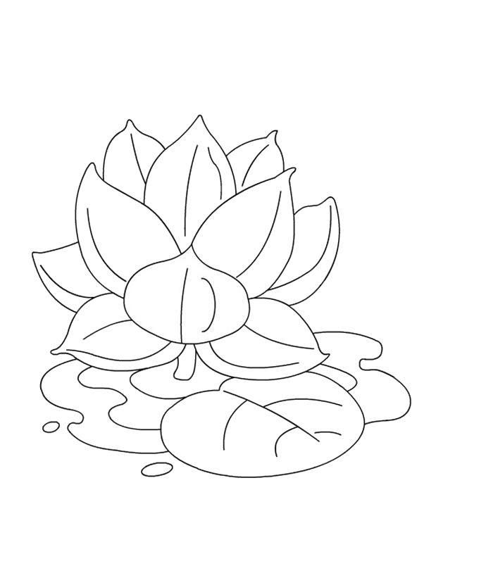 Tranh tô màu hoa sen dễ tô
