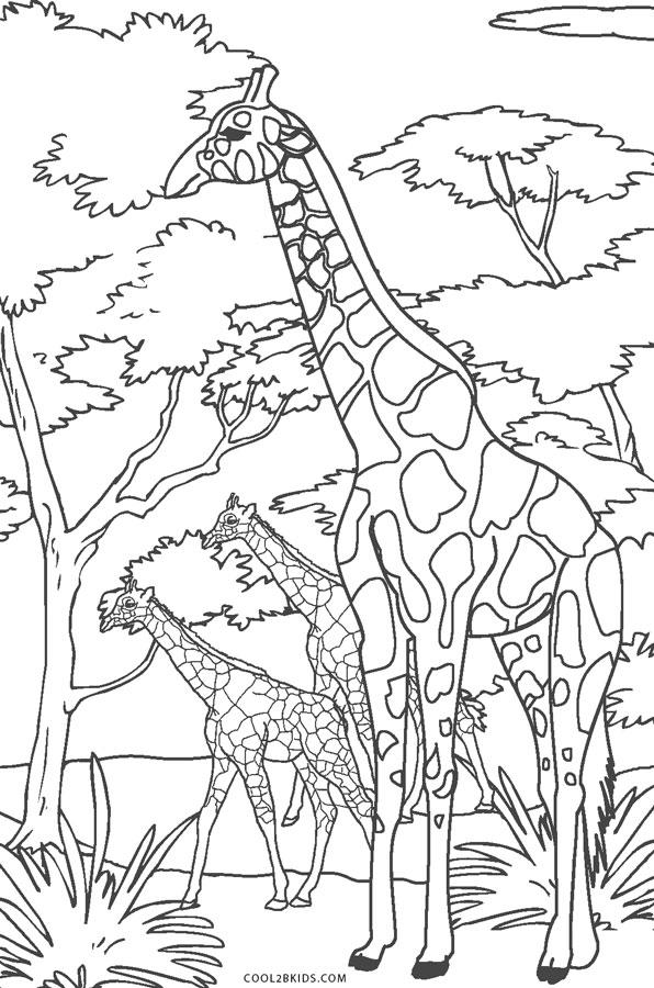 Tranh tô màu hươu cao cổ ngoài tự nhiên