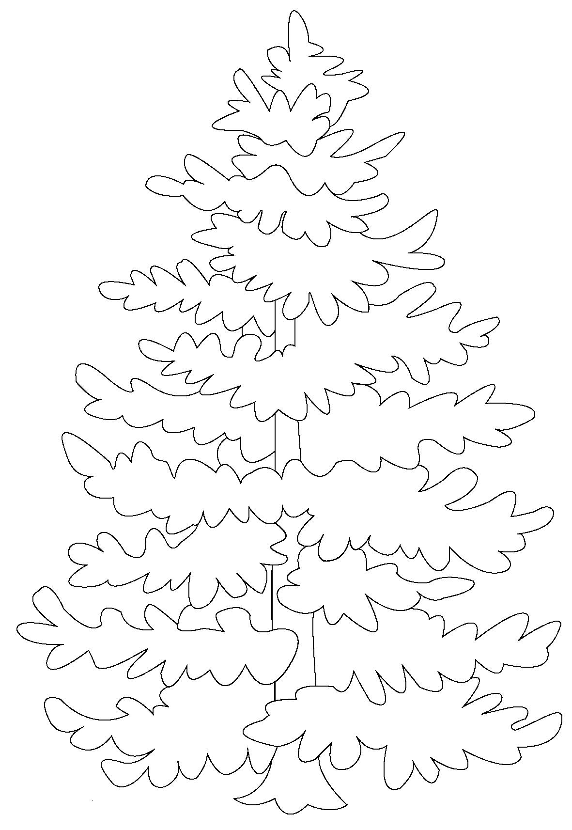 Hình tô màu cây thông đẹp nhất