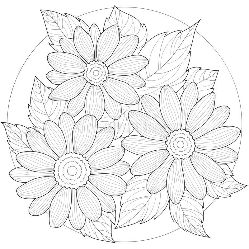 Mẫu tranh tô màu hoa cúc cực đẹp