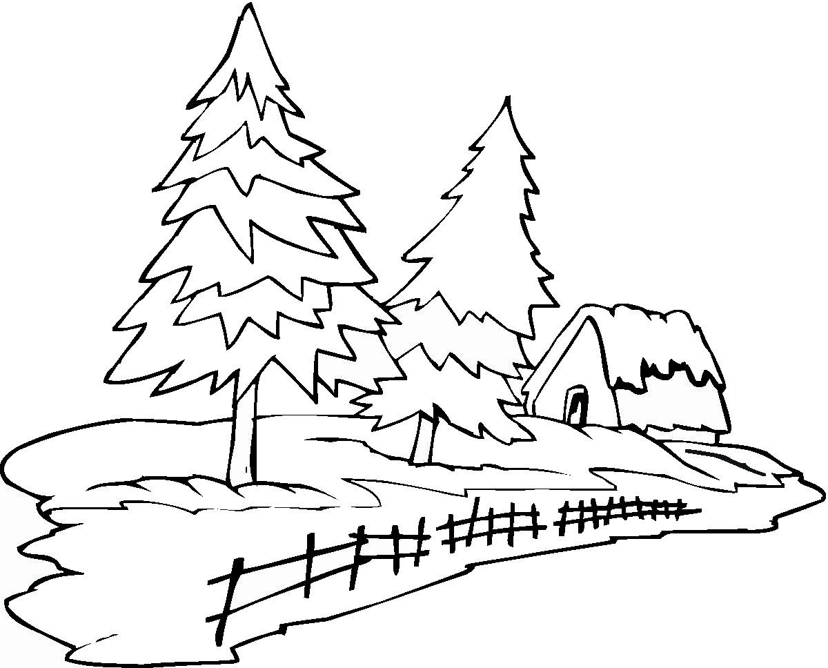 Tranh tô màu cây thông và ngôi nhà