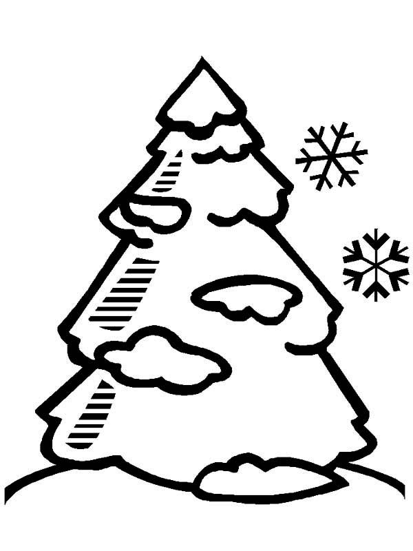 Tranh tô màu cây thông và tuyết