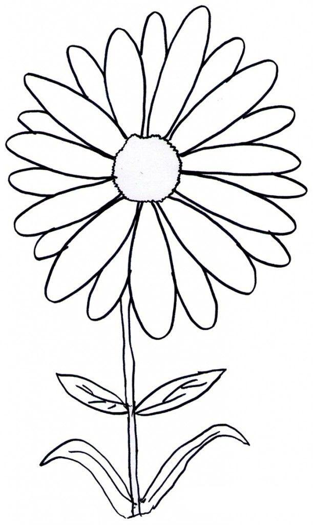 Tranh tô màu cho bé hình hoa cúc