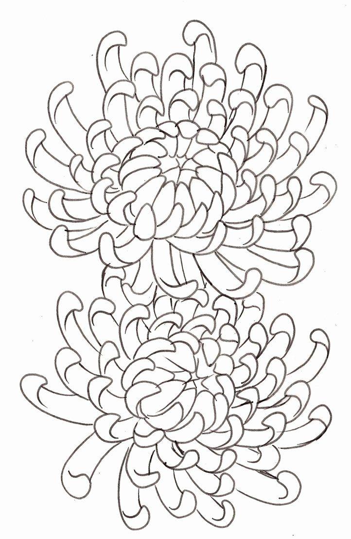 Tranh tô màu hai bông hoa cúc