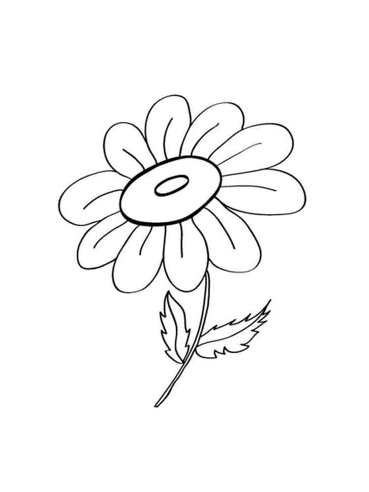 Tranh tô màu hoa cúc dễ thương