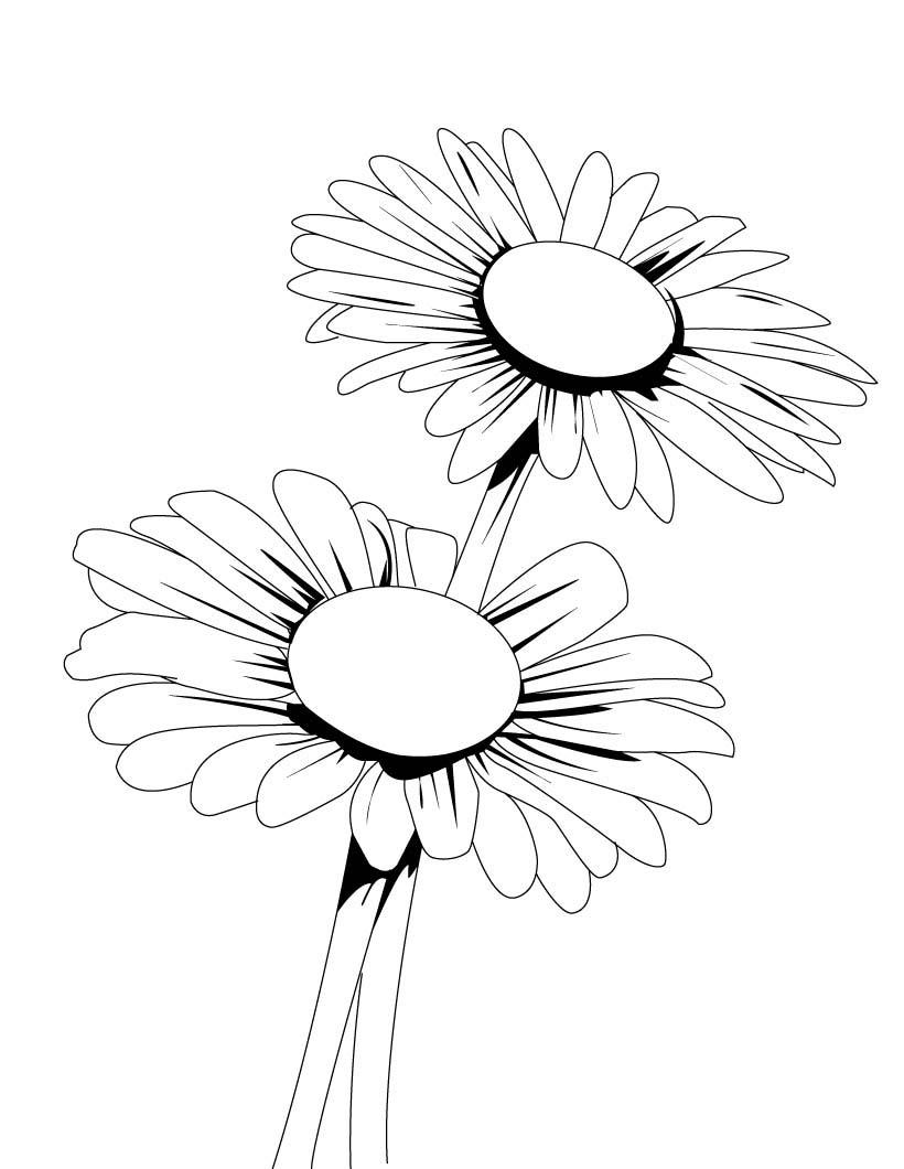 Tranh tô màu hoa cúc đơn giản, sắc nét