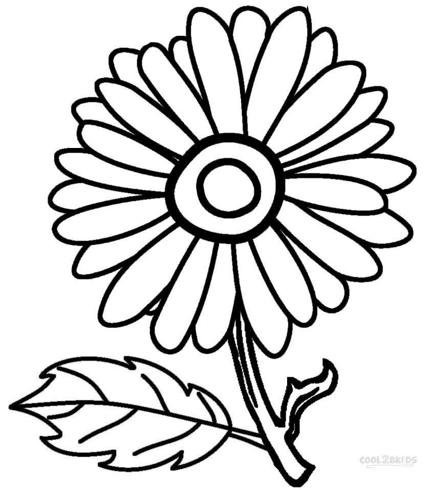 Tranh tô màu hoa cúc đơn giản