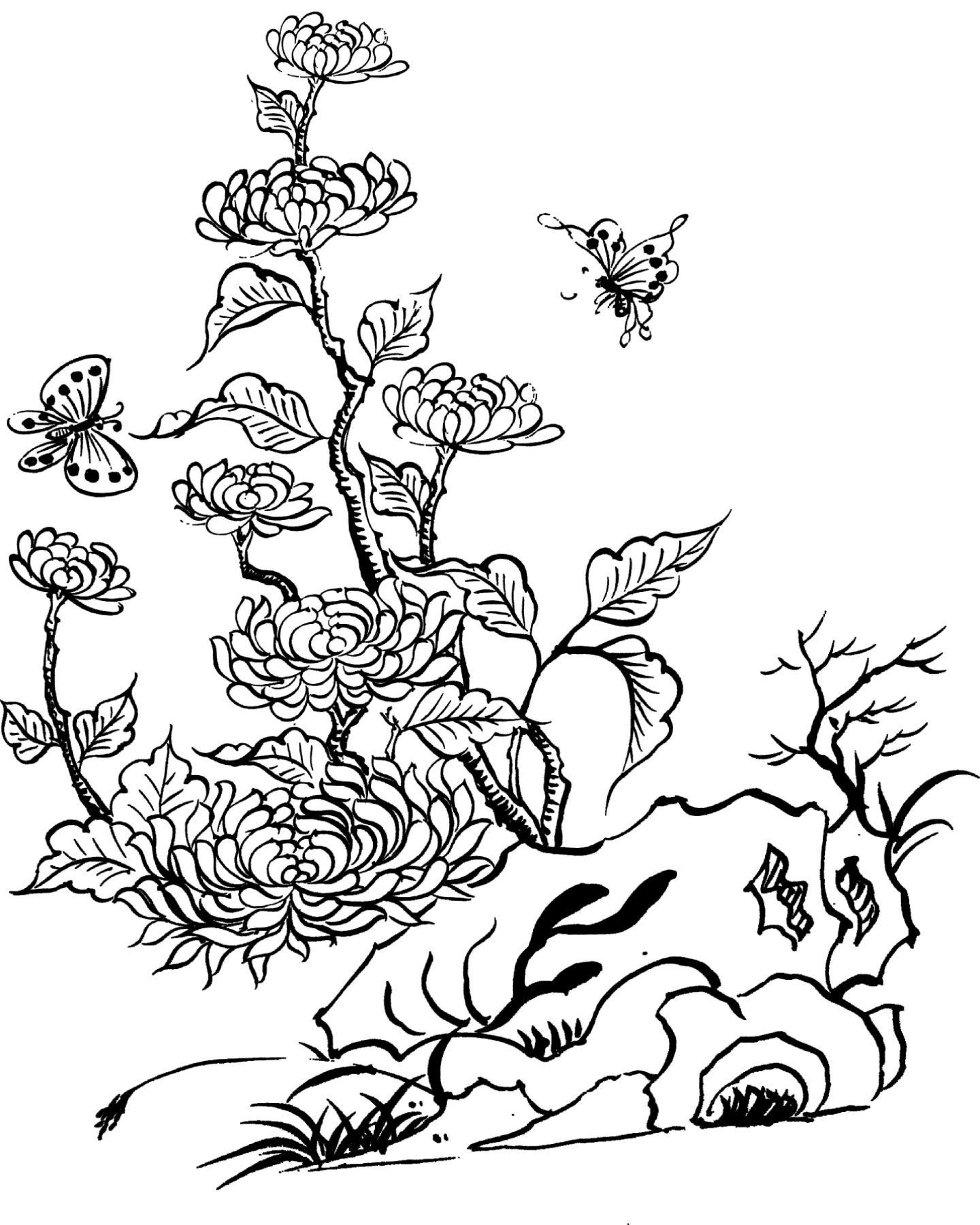 Tranh tô màu hoa cúc nghệ thuật