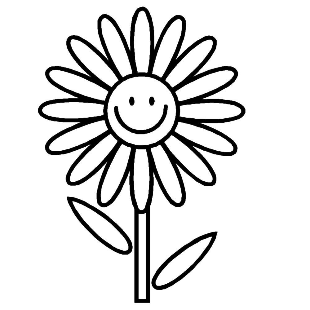 Tranh tô màu hoa cúc vui vẻ