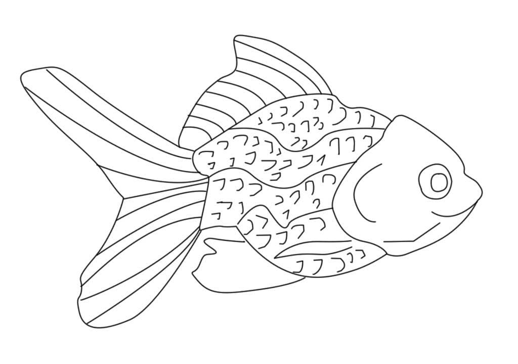 Tranh cá vàng tô màu cho bé