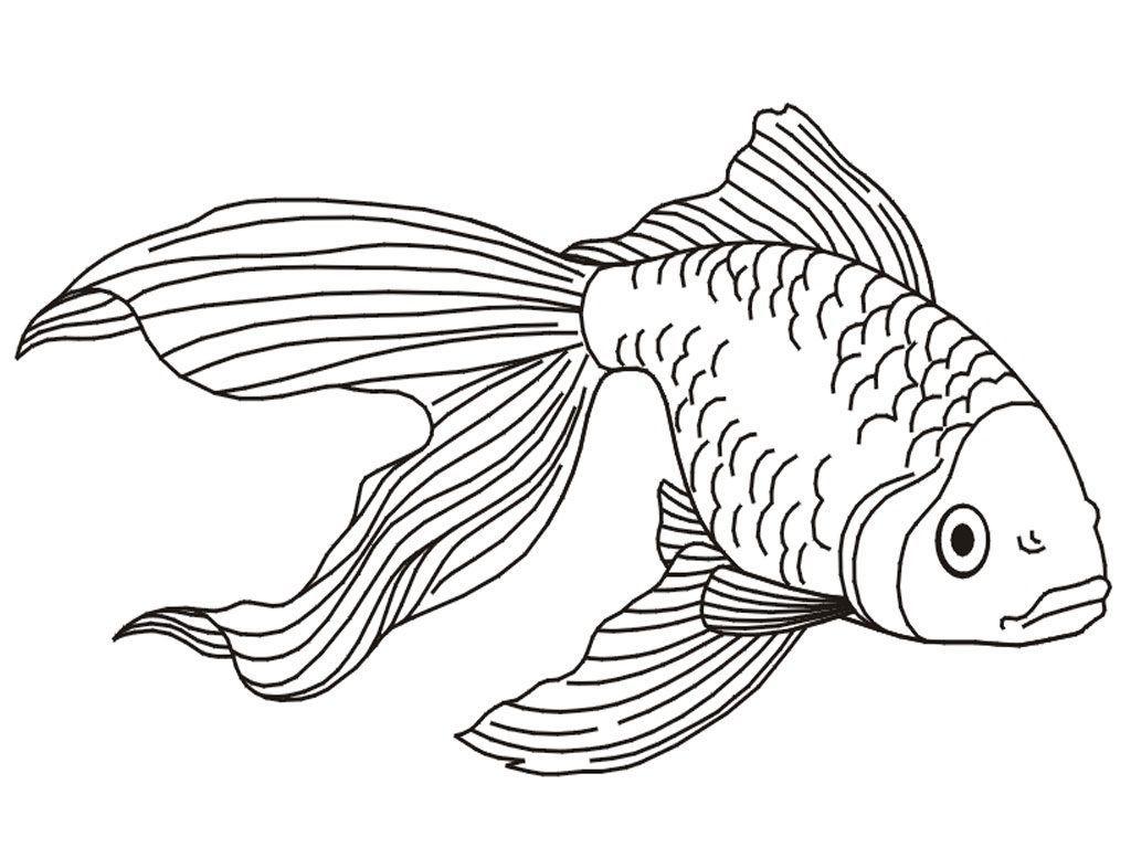 Tranh tô màu cá vàng sống động đẹp nhất