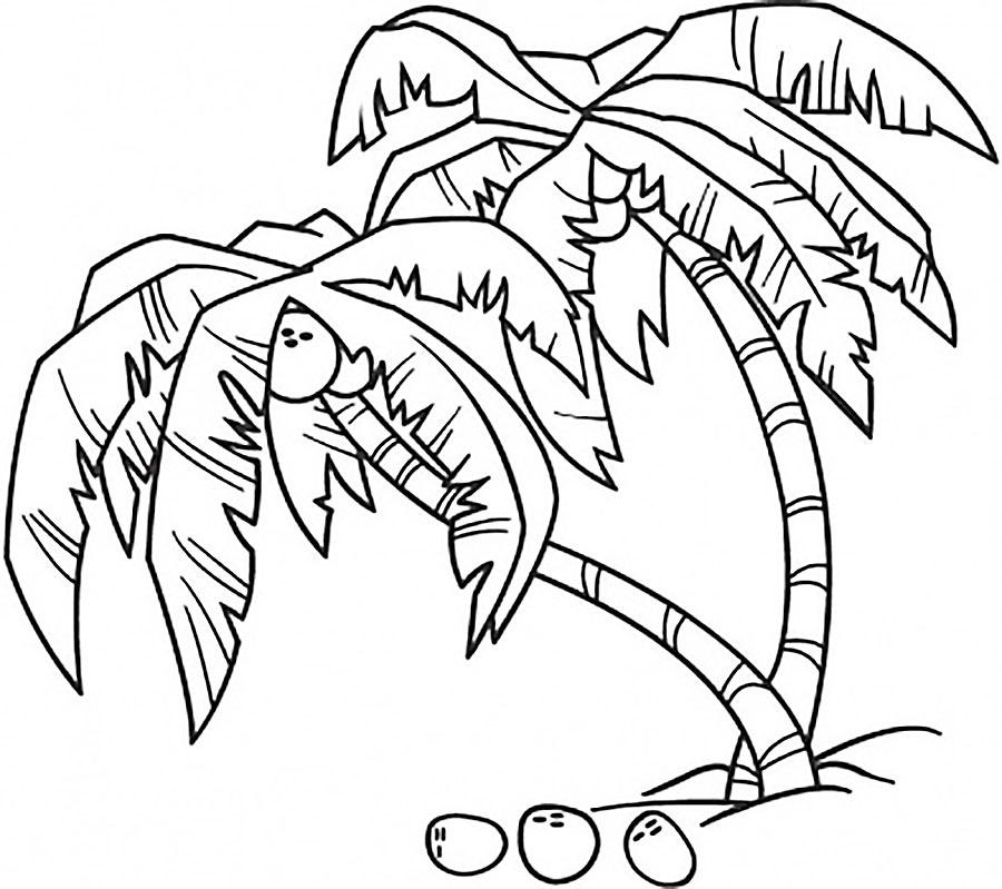 Tranh tô màu cây dừa đẹp cho bé