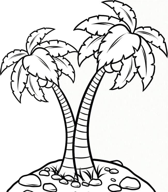 Tranh tô màu cây dừa rõ ràng, sắc nét cho bé tập tô