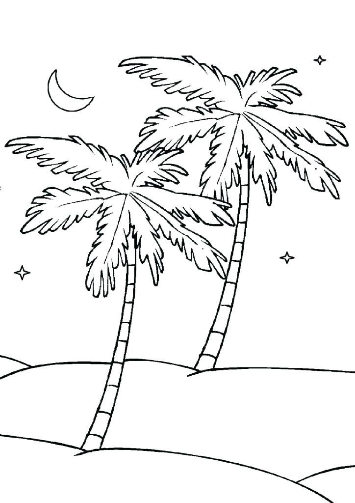 Tranh tô màu cây dừa về đêm