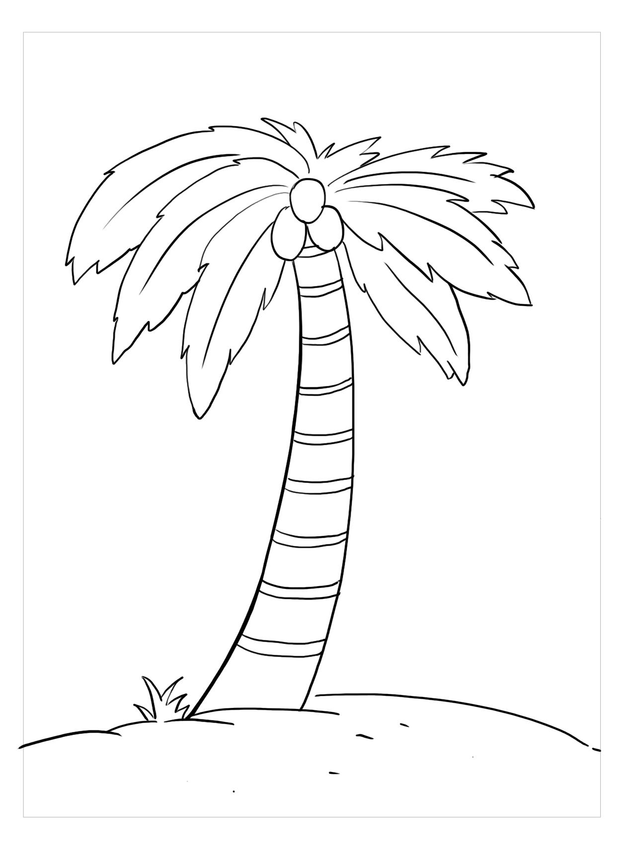 Tranh tô màu cho bé hình cây dừa