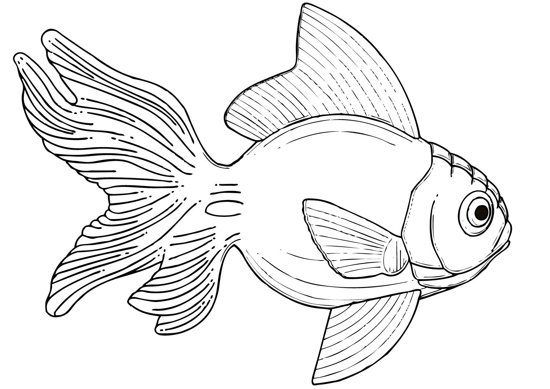 Tranh tô màu chú cá vàng đáng yêu