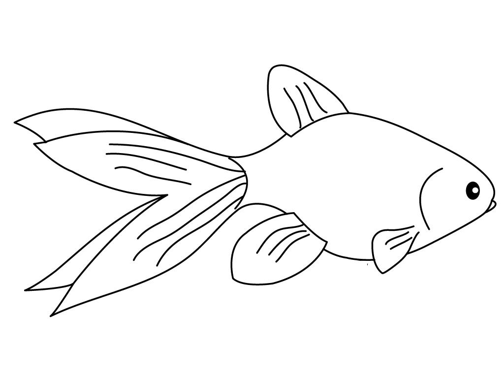 Tranh tô màu chú cá vàng đơn giản