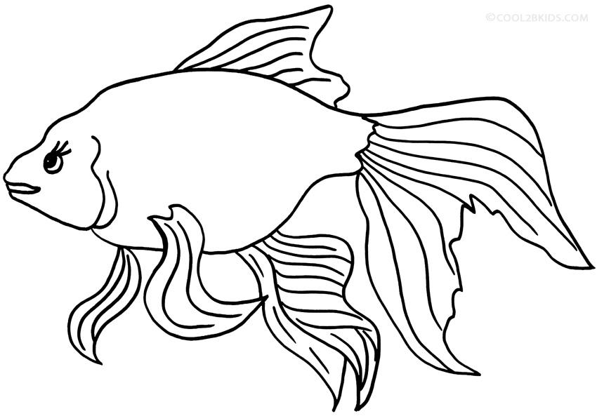 Tranh tô màu hình con cá vàng