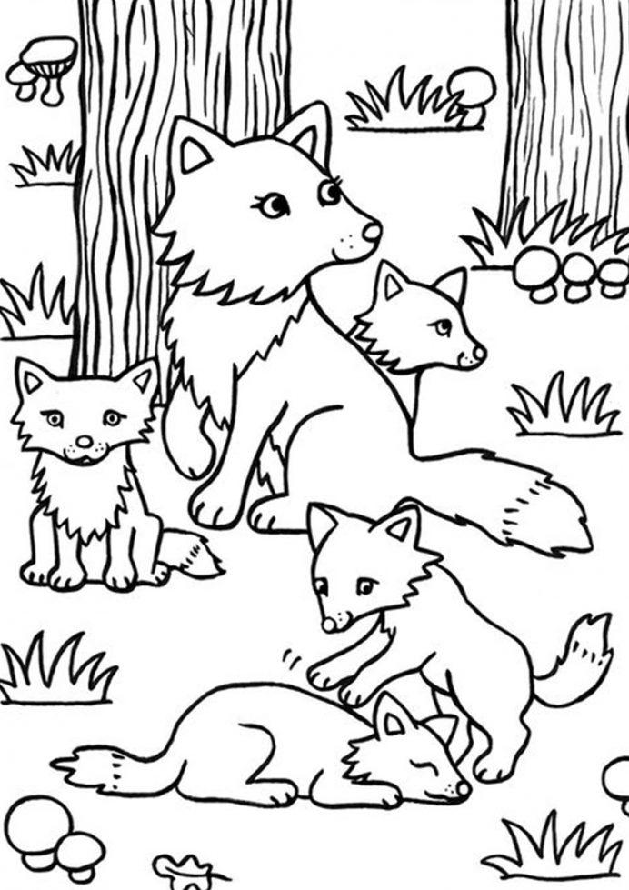 Tranh tô màu cáo mẹ và đàn con