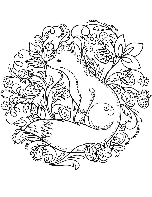 Tranh tô màu con cáo đẹp tuyệt