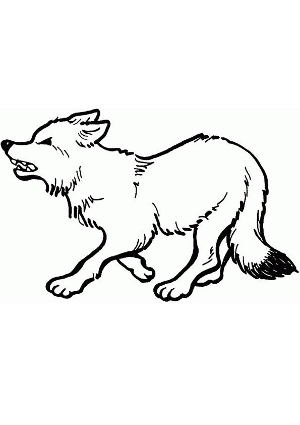 Tranh tô màu con cáo giận dữ