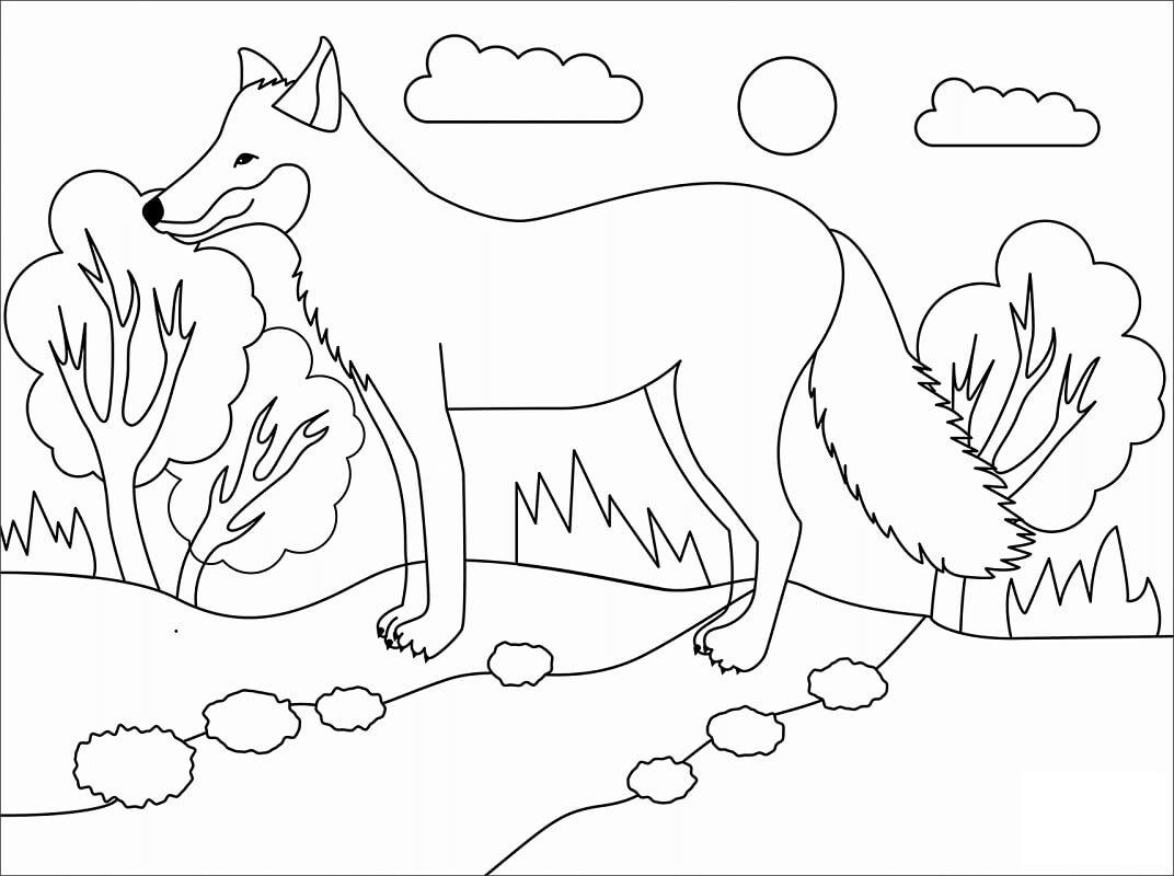 Tranh tô màu con cáo trong rừng