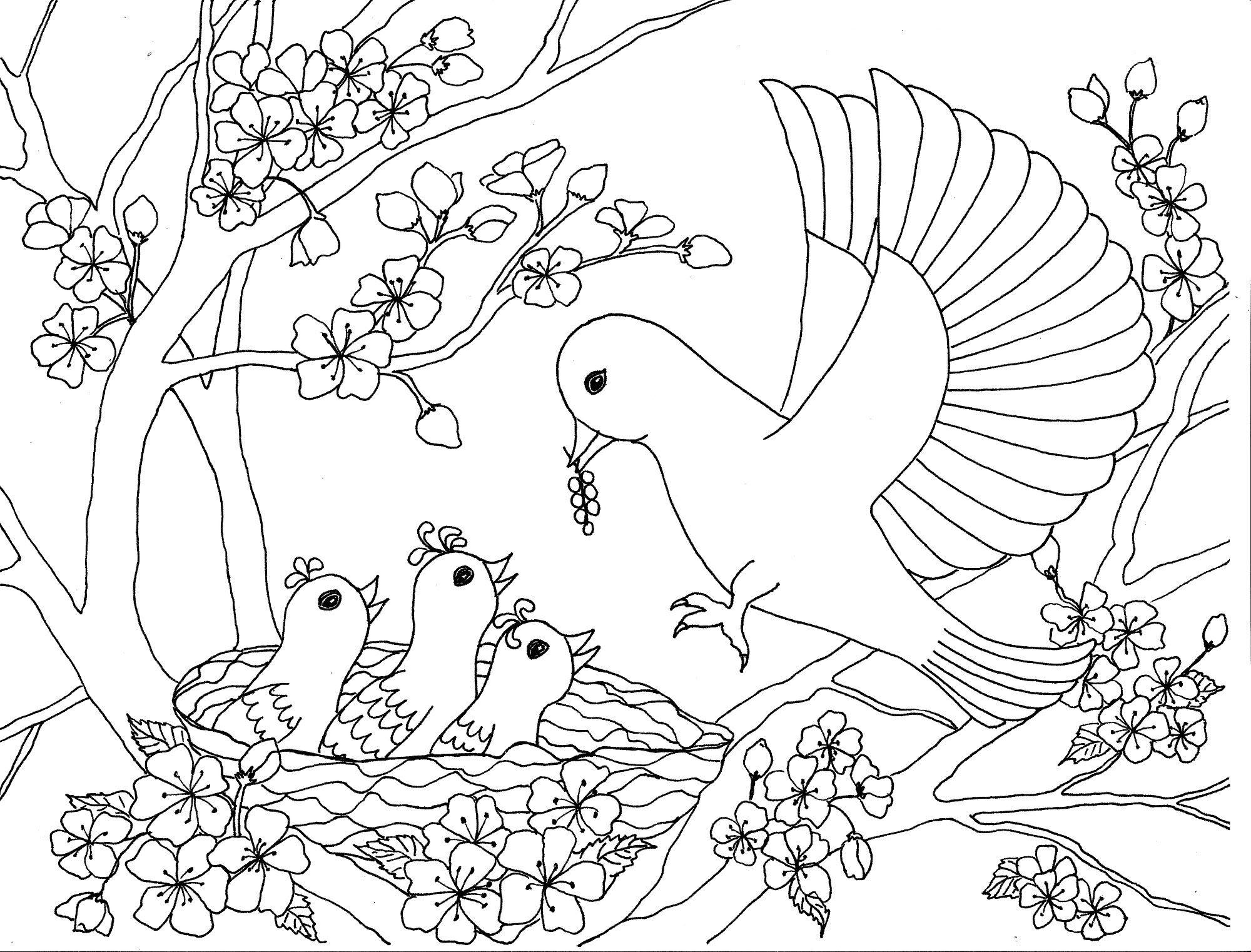 Tranh tô màu hoa đào và đàn chim non