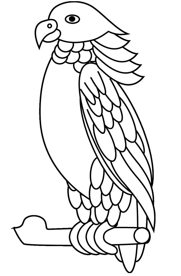 Tranh tô màu chim vẹt hoàng đế
