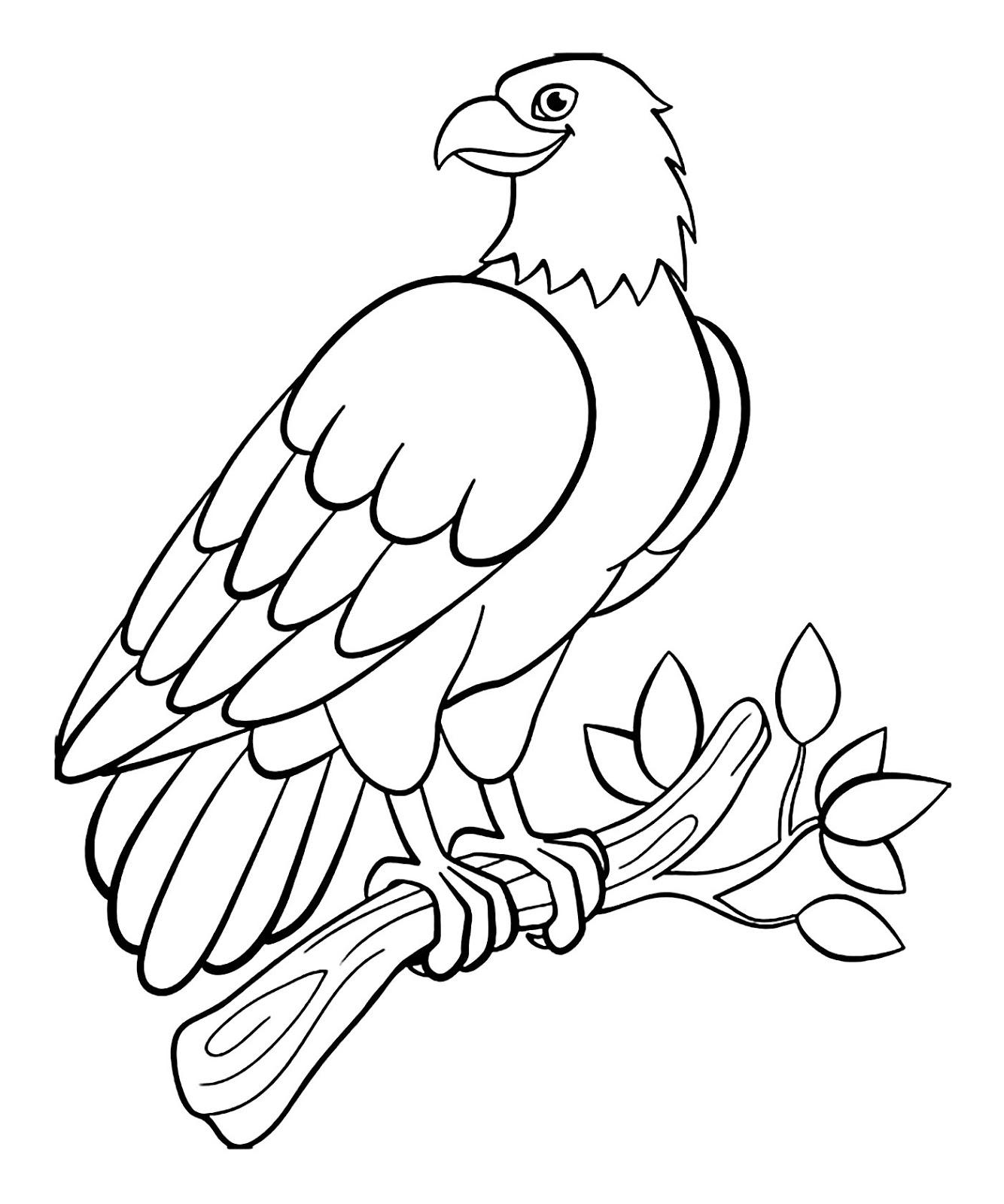 Tranh tô màu con chim đại bàng