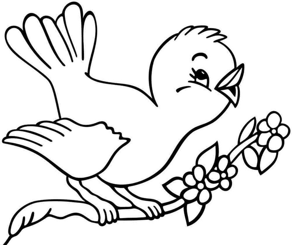 Tranh tô màu con chim đang hót