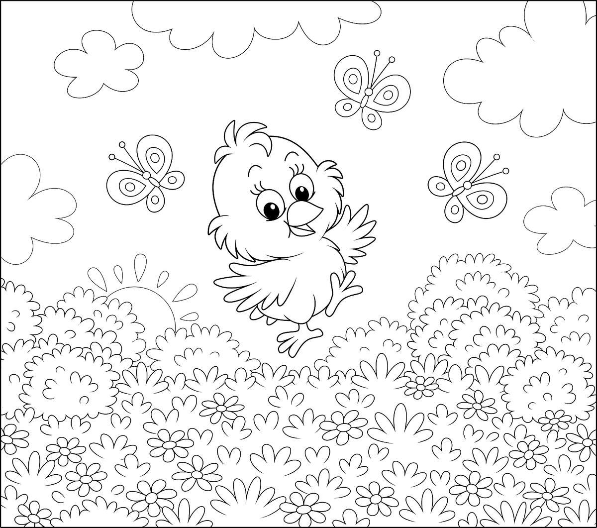 Tranh tô màu con chim đẹp, dễ thương