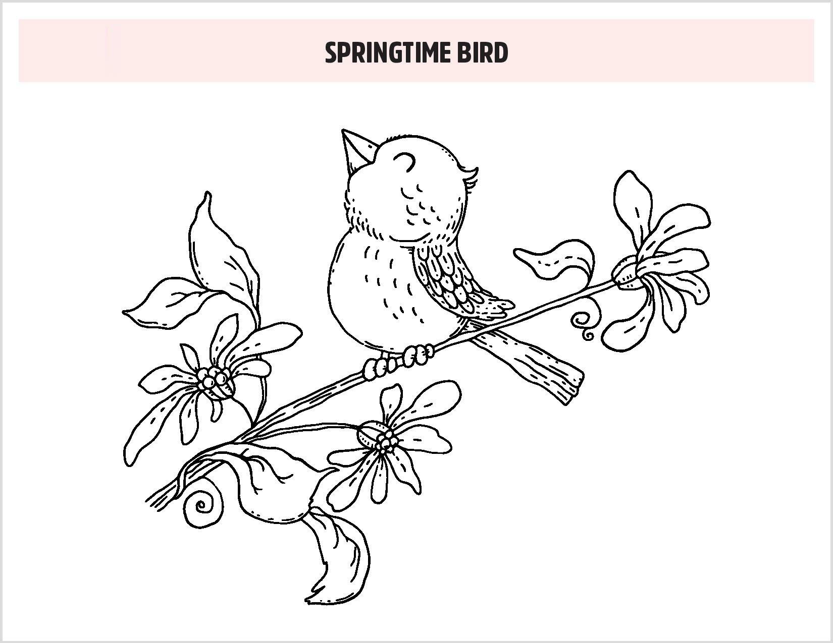 Tranh tô màu con chim mùa xuân đáng yêu