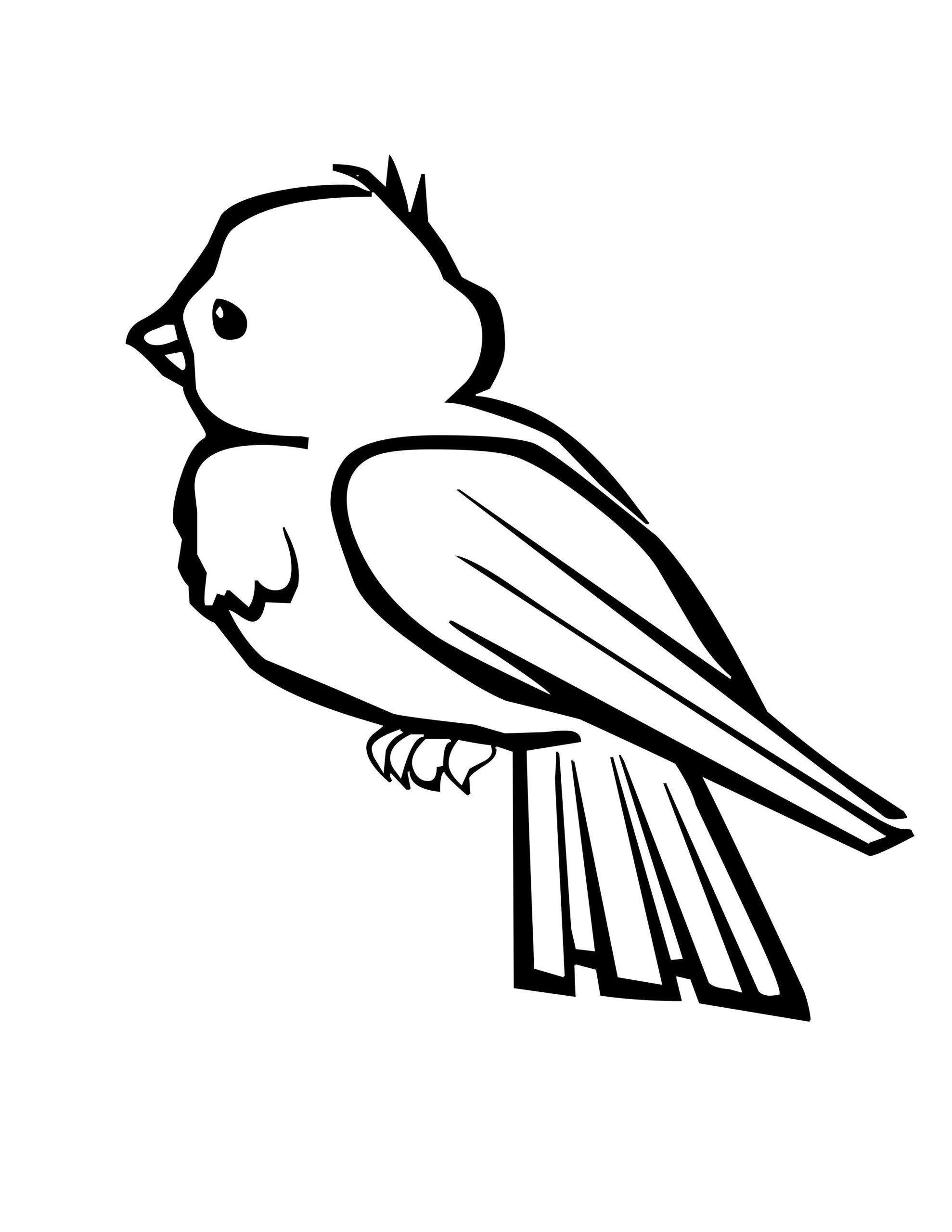 Tranh tô màu con chim sắc nét dễ tô