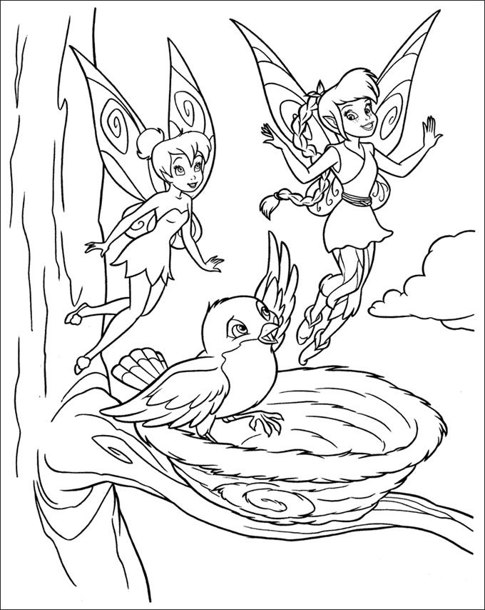 Tranh tô màu con chim và nàng tiên Tinkerbell