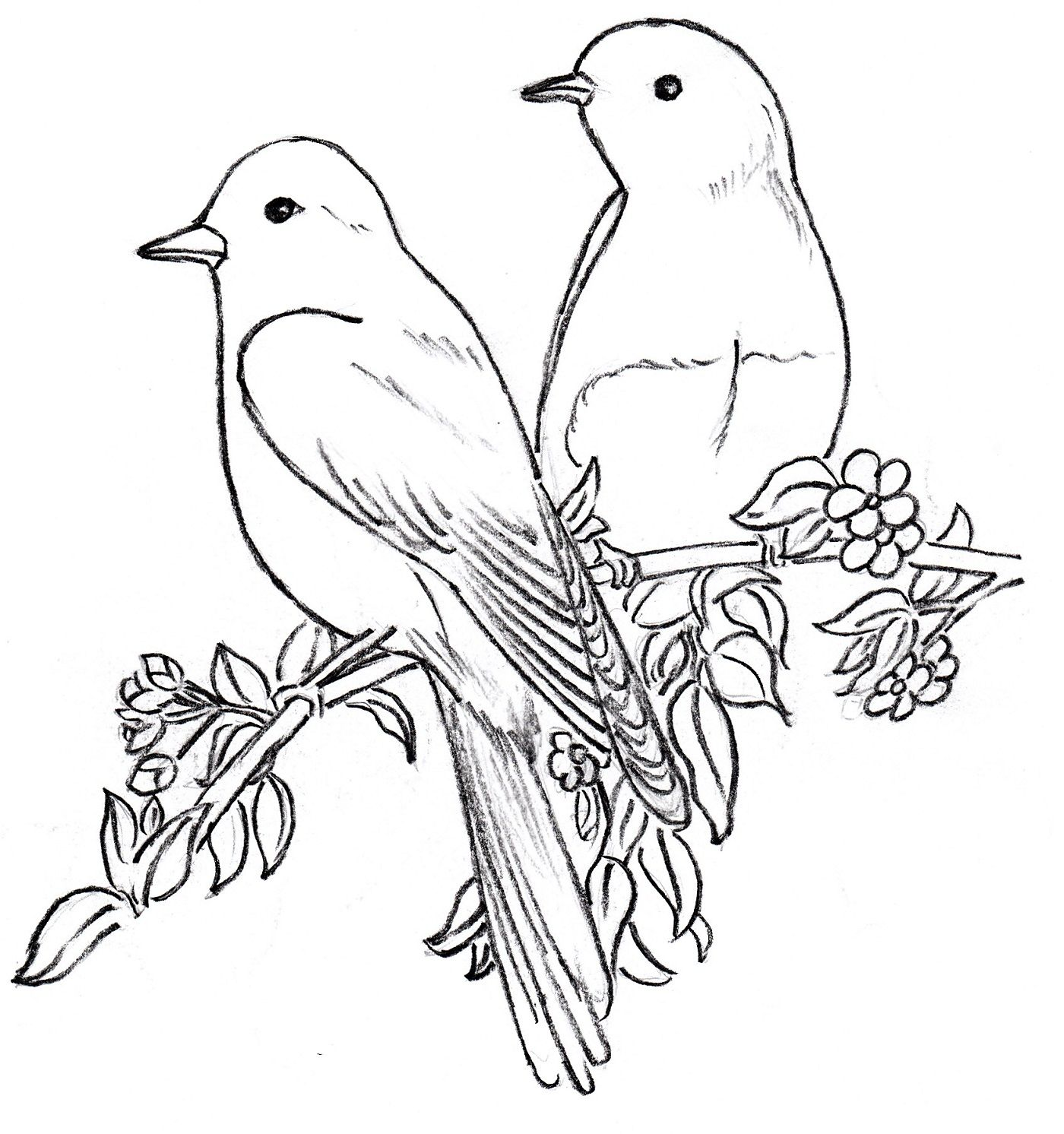 Tranh tô màu đôi chim hạnh phúc