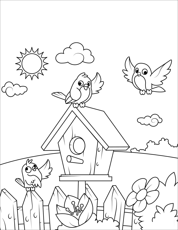 Tranh tô màu những chú chim vui vẻ