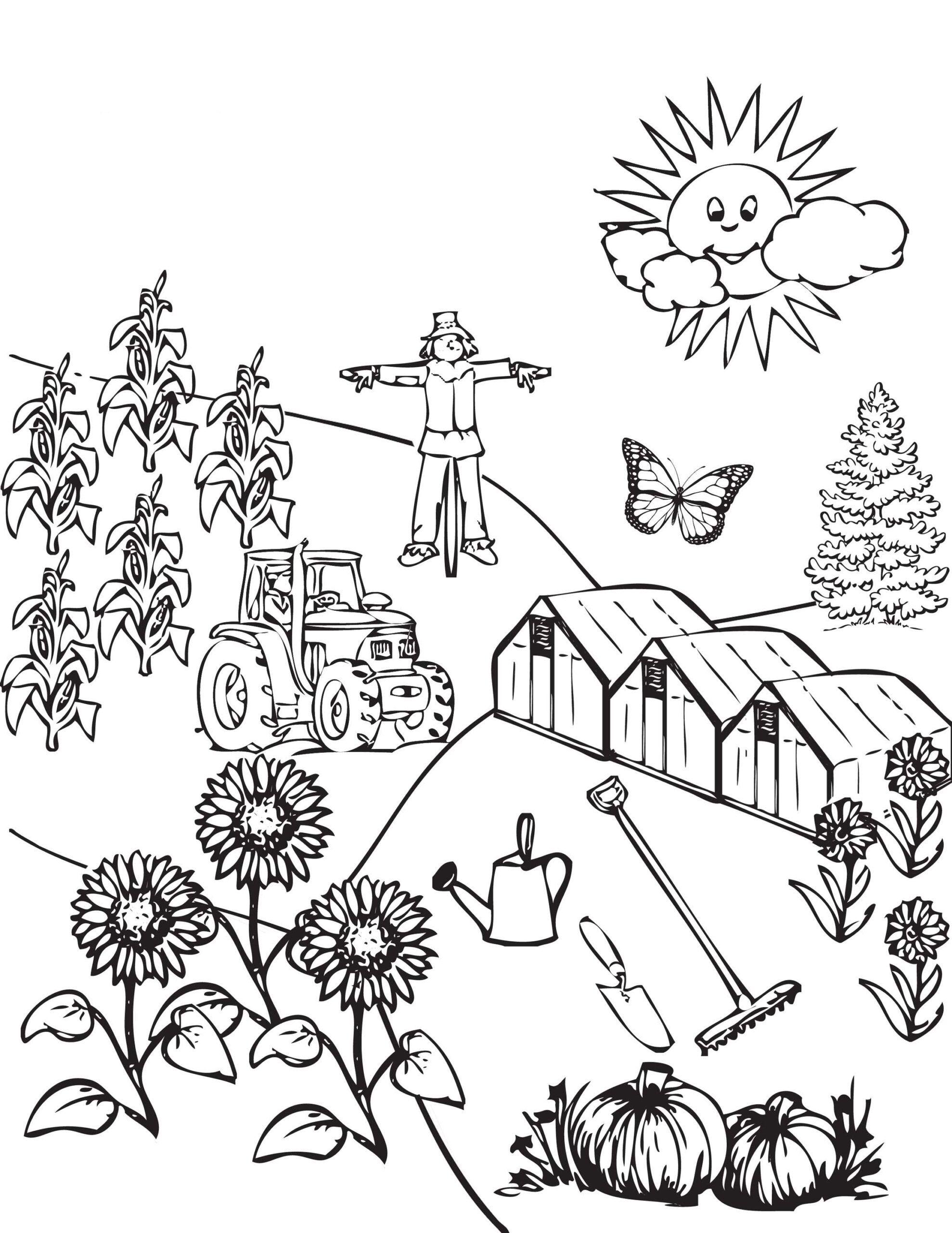 Tranh tô màu phong cảnh nông thôn