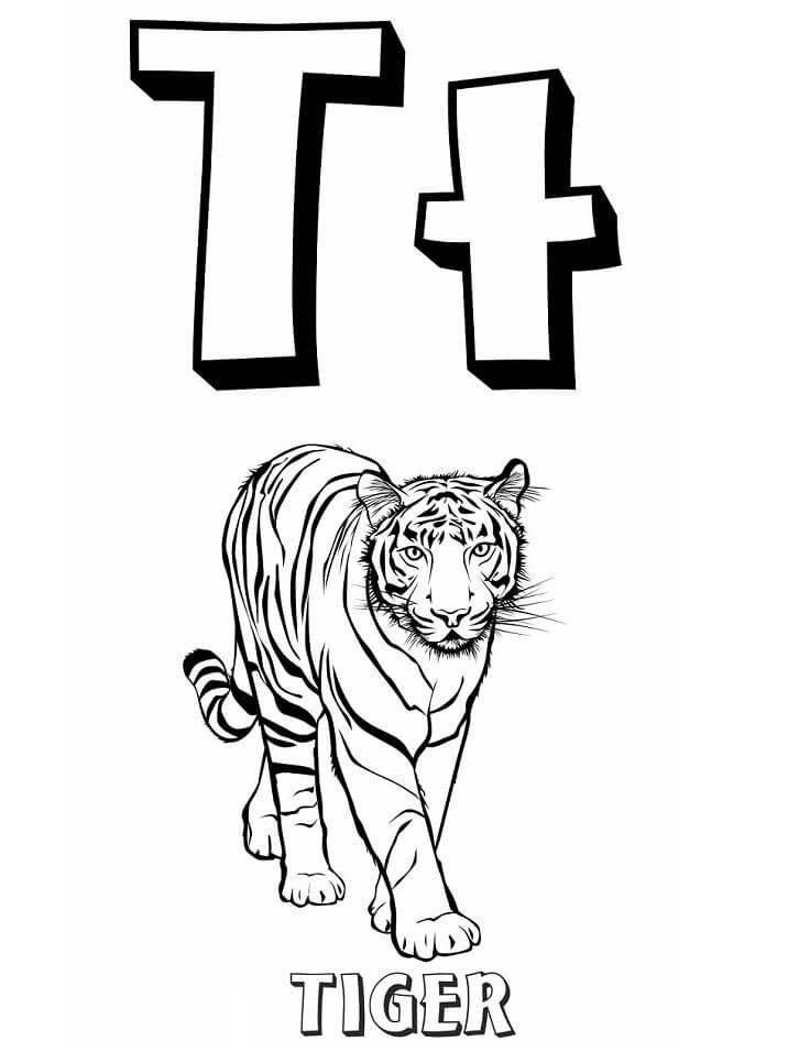 Hình tô màu con hổ đẹp, chất
