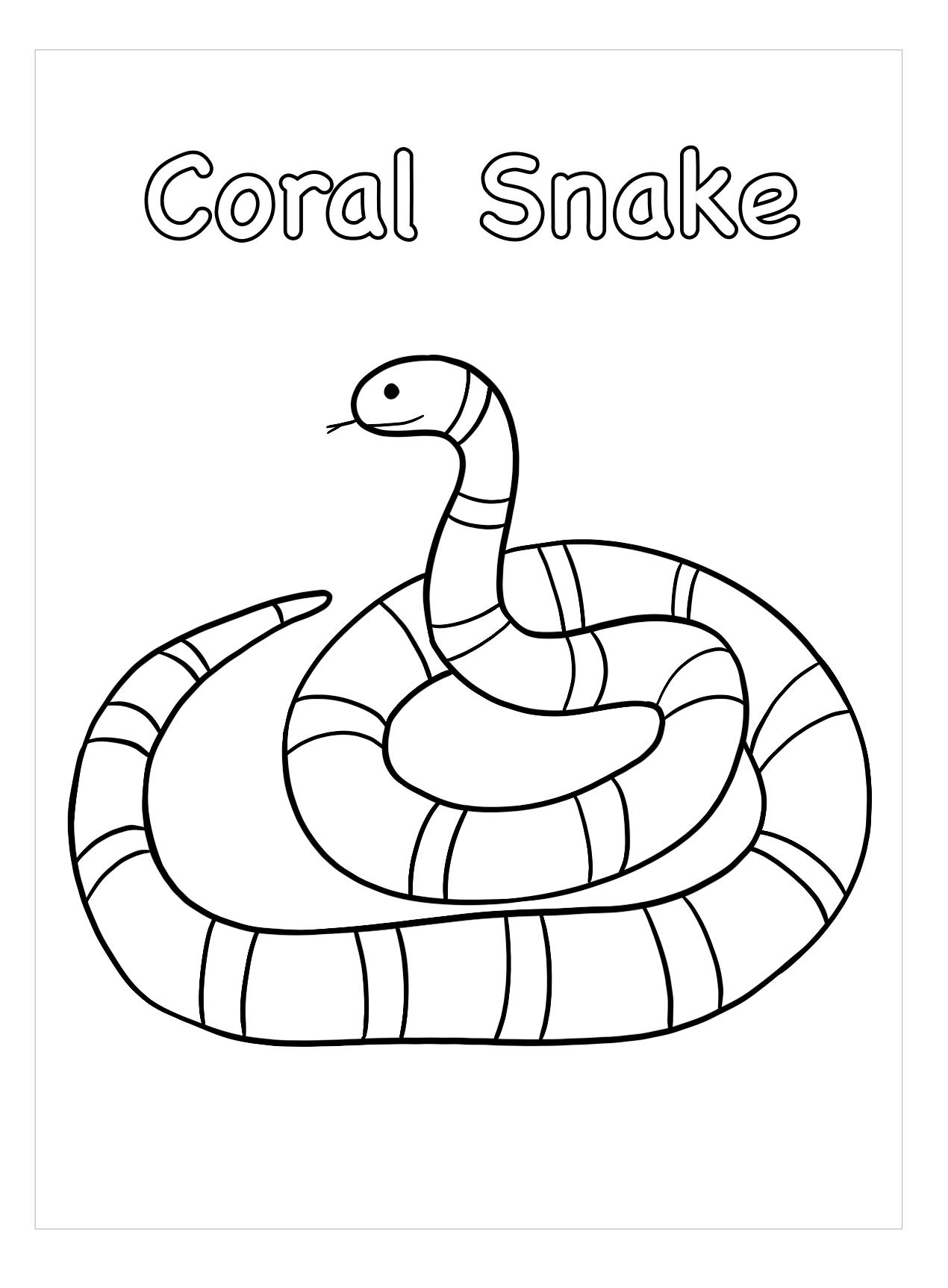 Hình tô màu con rắn