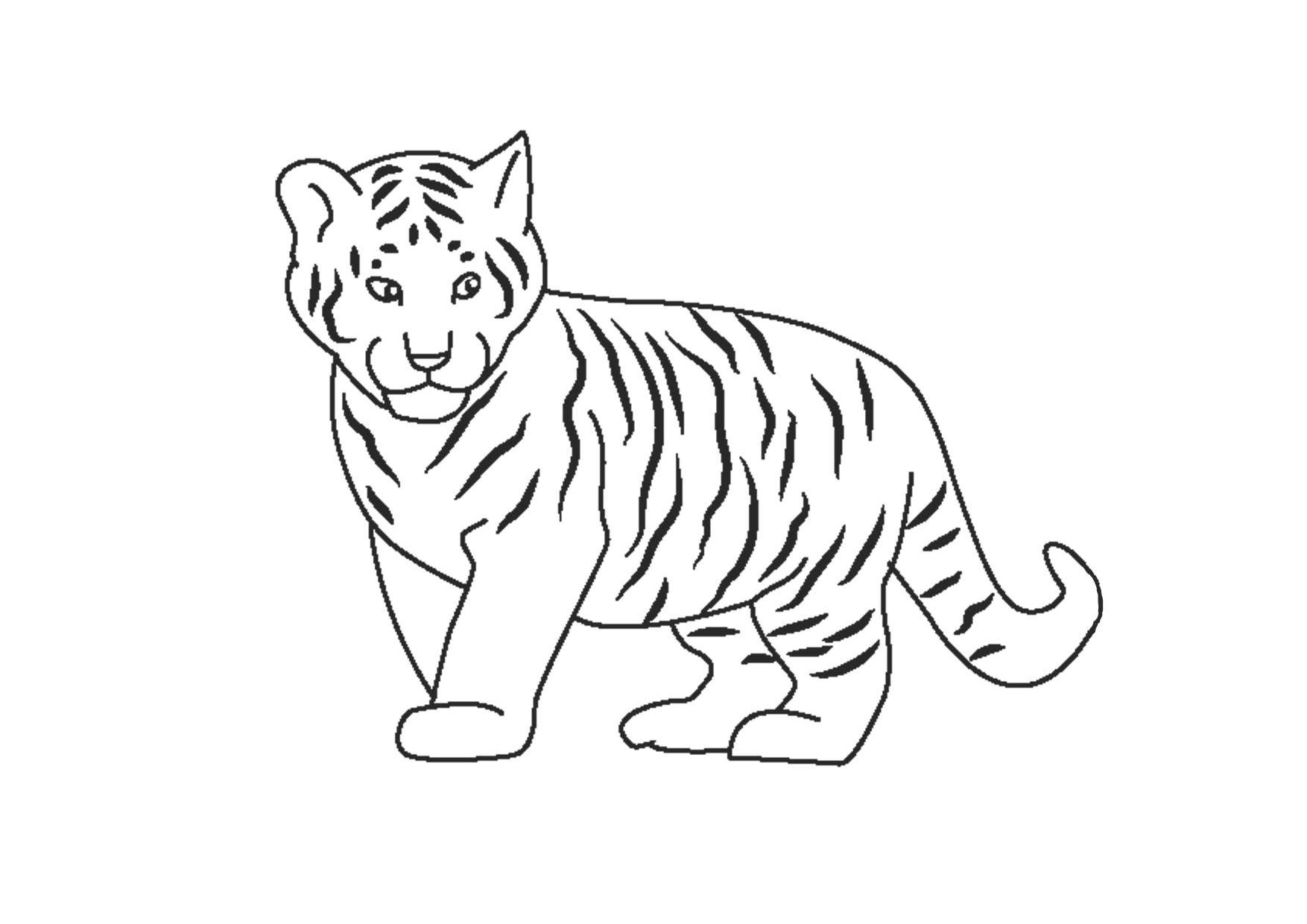 Tranh tô màu con hổ con