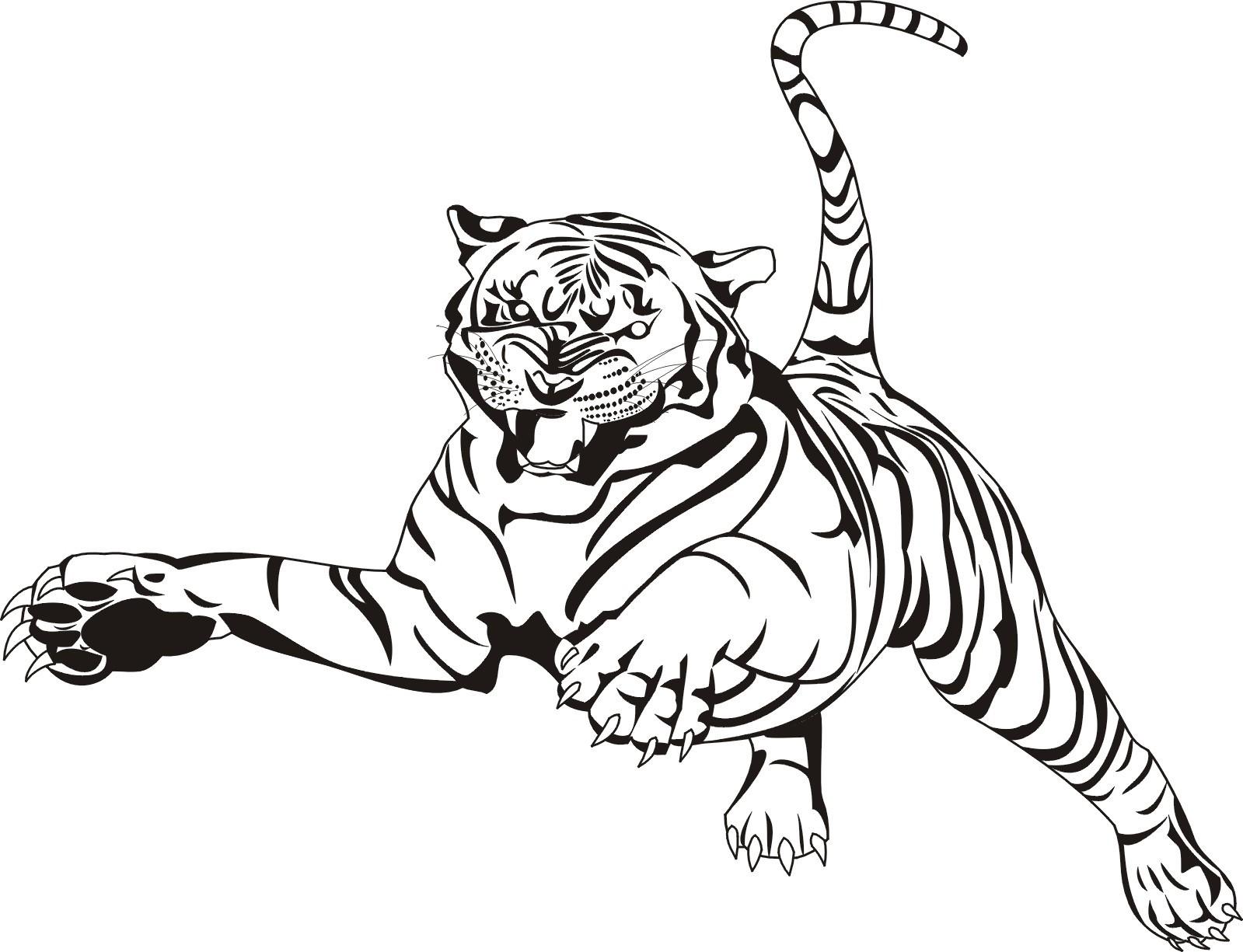 Tranh tô màu con hổ đẹp, ngầu