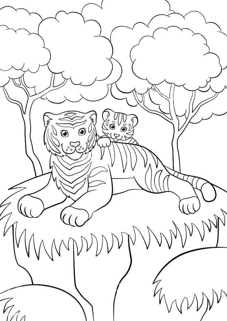 Tranh tô màu con hổ đẹp, sống động