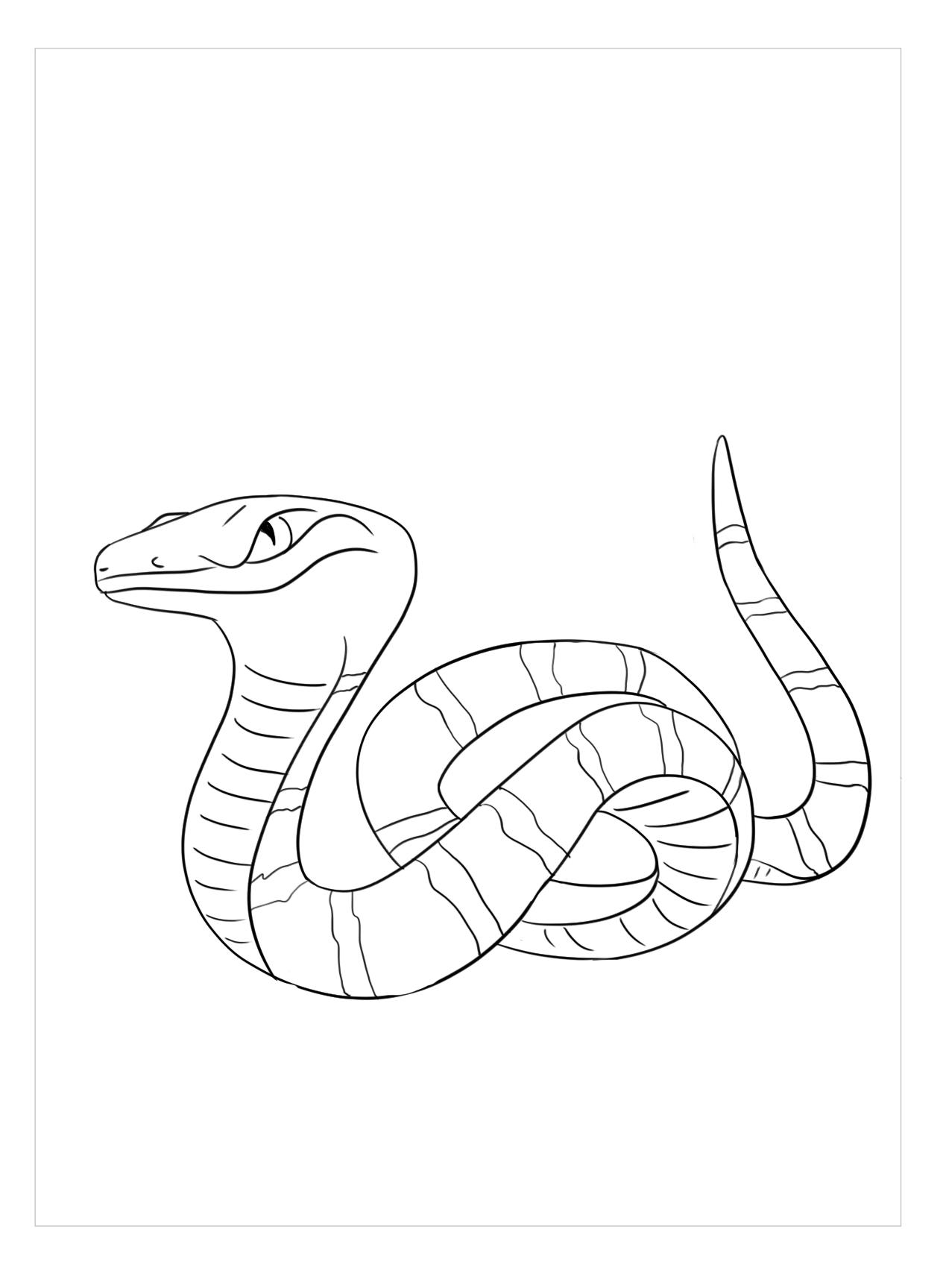 Tranh tô màu con rắn đẹp, ngầu