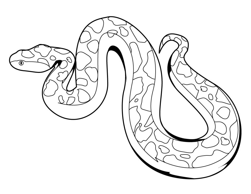 Tranh tô màu con rắn đẹp nhất
