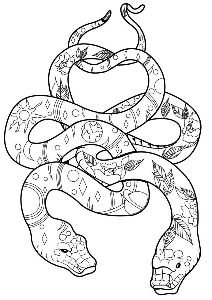 Tranh tô màu con rắn họa tiết đẹp, khó