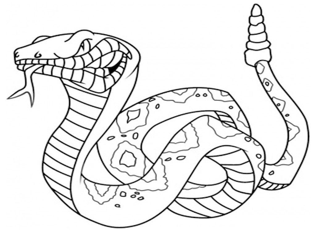 Tranh tô màu rắn chuông cực ngầu